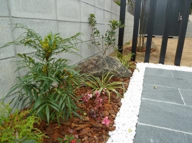 植栽エリアは常緑の植物を中心に。