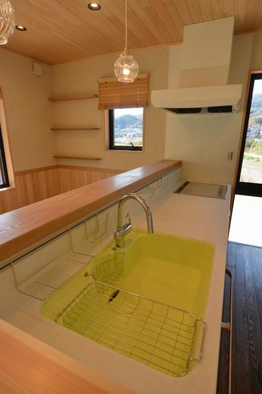キッチンのシンクは鮮やかなグリーンを